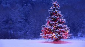 mindful christmas scene